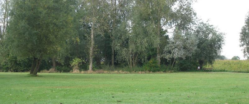 Burchtdam wordt stadspark