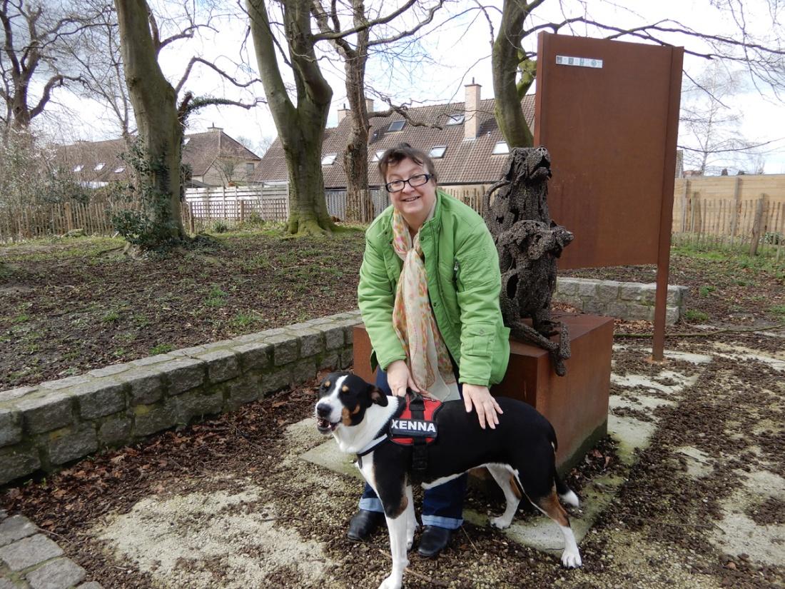 Tijdelijke opvang voor dieren zoekt vrijwilligers