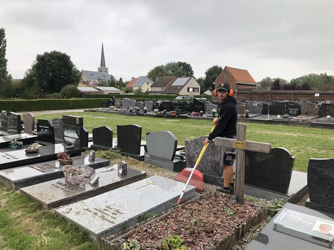 Nu ook ecologische paden op begraafplaatsen in Grimbergen en Lint