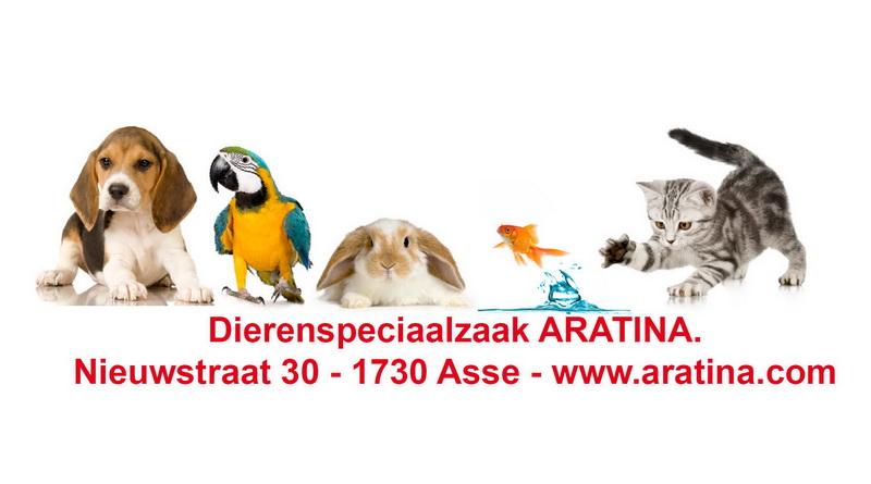 Aratina