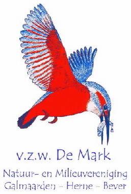 Baljuwhuis & vzw De Mark: yoga en relaxatielessen