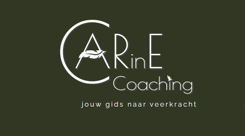 CARinE Coaching