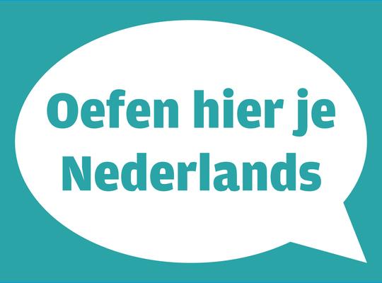 Merchtemse N-VA wil affiches om Nederlands te ondersteunen