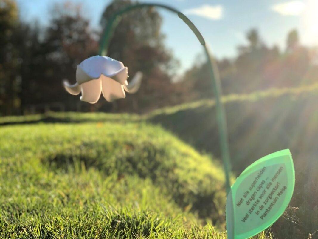 Plantentuin verkoopt Mijmerklokjes ten voordele van ziekenhuispersoneel