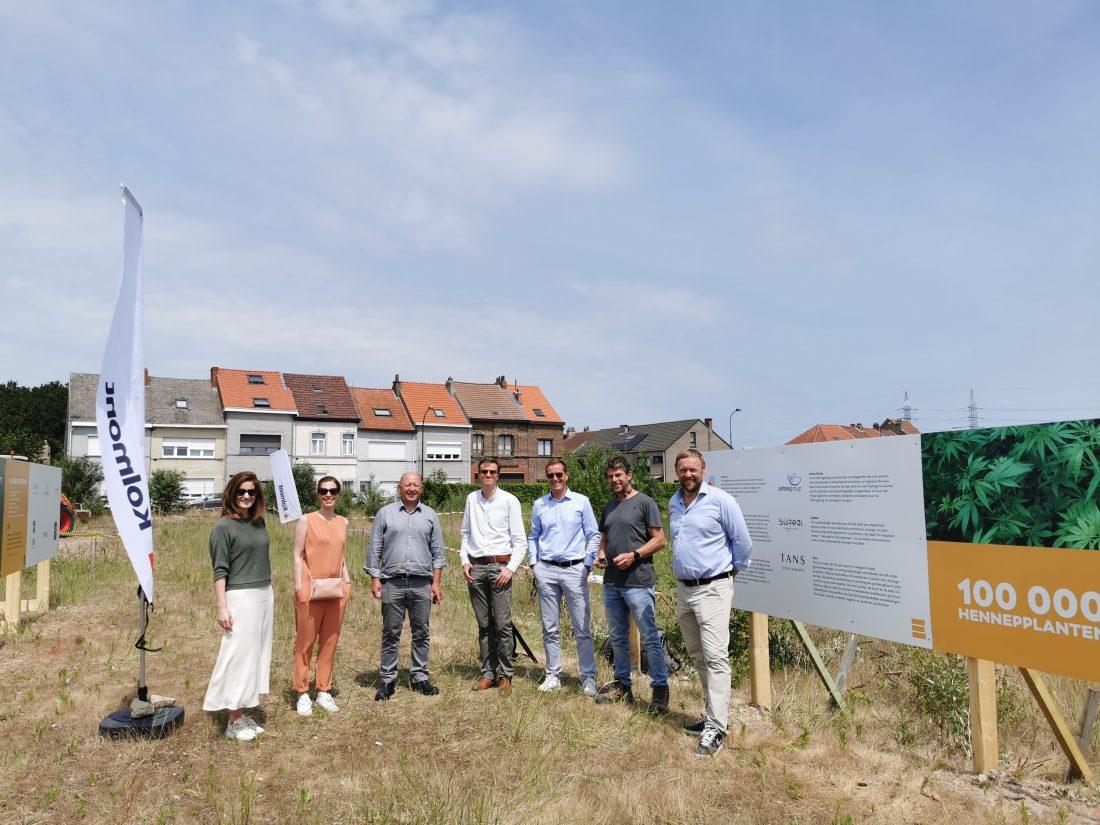 1,5 miljoen hennepplanten op Akzo Nobel-site in afwachting van nieuwbouwproject
